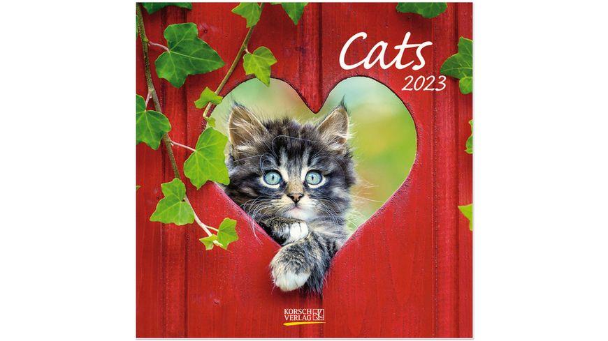 Cats 2022 - Broschürenkalender mit Ferienterminen