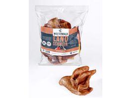 WESTERWALD BEUTE Schweineohren Snack vom Landschwein 10 Stueck