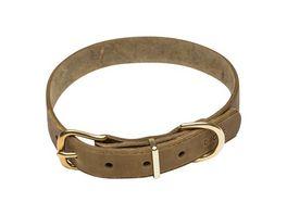 DOGIUS Hundehalsband Hermes gruen S
