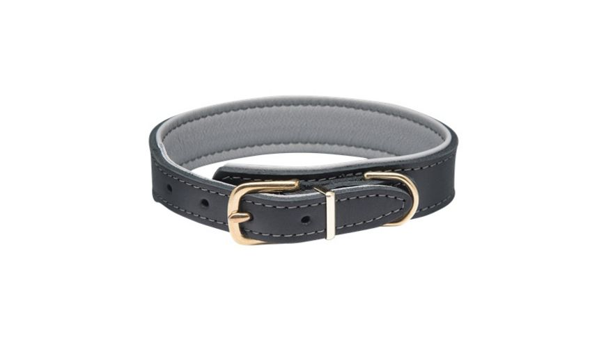 DOGIUS Hundehalsband Kepler schwarz graphit XL
