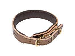 DOGIUS Hundehalsband Kepler gold XL