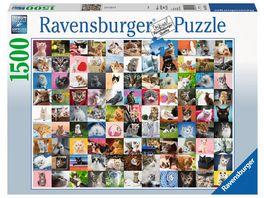 Ravensburger Puzzle 99 Katzen 1500 Teile