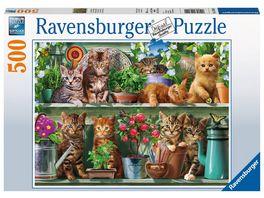 Ravensburger Puzzle Katzen im Regal 500 Teile