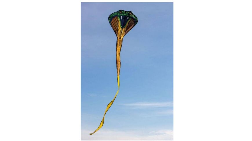 Guenther Flugmodelle Einleiner Drachen aus Polyester COBRA