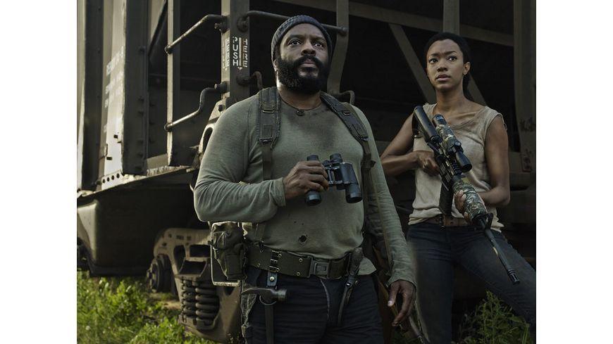 The Walking Dead Season 5 Uncut 5 DVDs