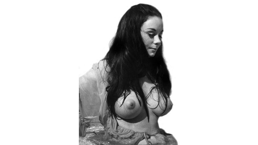 Russ Meyer Finders Keepers Lovers Weepers Kinoedition