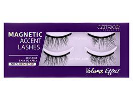 Catrice Magnetic Accent Lashes 010 LashGangVolume
