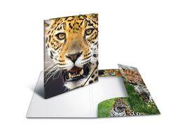 HERMA Sammelmappe A4 PP Leopard