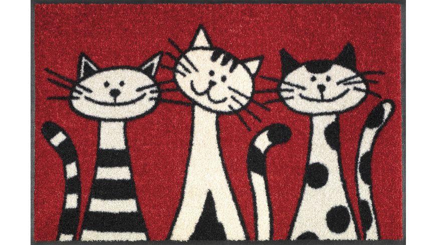 wash+dry Fußmatte Three Cats 50x75cm