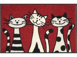 wash dry Fussmatte Three Cats 50x75cm