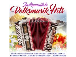 Instrumentale Volksmusikhits