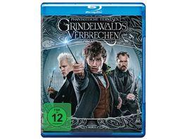 Phantastische Tierwesen Grindelwalds Verbrechen Blu ray Extended Cut