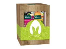 Kneipp Geschenkpackung Osternest