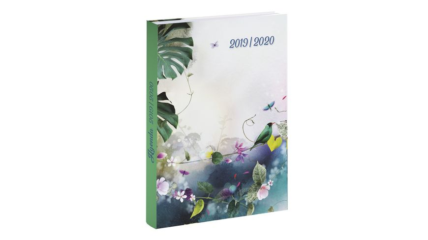 Schülerkalender Chacha 12 x 17cm, 2019/2020 Motive sortiert