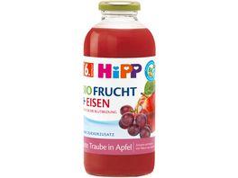 HiPP BIO Fruchtsaft und Eisen 0 5 l Rote Traube in Apfel ohne Zuckerzusatz ab 6 Monat