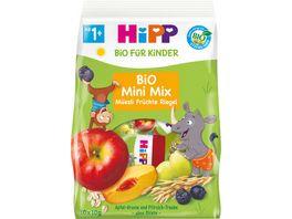 HiPP Bio fuer Kinder 100g Bio Mini Mix Mueesli Fruechte Riegel 5 x Pfirsich Traube 5 x Apfel Aronia ohne Oblate 10 a 10g ab 1