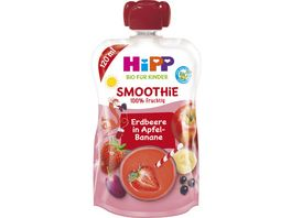 HiPP Bio fuer Kinder Smoothie Erdbeere in Apfel Banane Flora Flamingo 120 ml