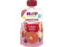 HiPP Smoothie Mix Rote Fruechte in Apfel Banane