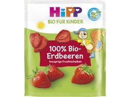 HiPP Bio Erdbeerscheiben