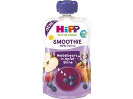 HiPP Bio fuer Kinder Smoothie Heidelbeere in Apfel Birne Felix Faultier 120 ml