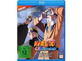 Naruto Shippuden Staffel 25 Folgen 700 713 2 BRs