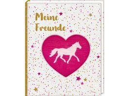 Die Spiegelburg Freundebuch Pferdefreunde Meine Freunde mit Wendepailletten Patch