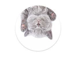 PopSockets PopGrip Cat Nap