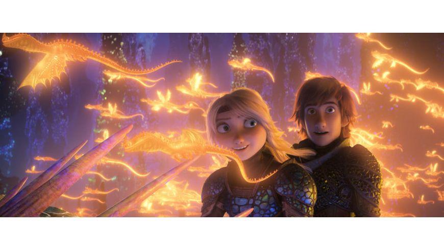 Drachenzaehmen leicht gemacht 3 Die geheime Welt Blu ray