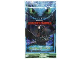 Blue Ocean Dragons Drachenzaehmen leicht gemacht 3 Die geheime Welt Sammelkarten Boosterpack 5 Karten