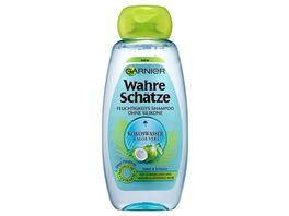 GARNIER Wahre Schaetze Feuchtigkeits Shampoo Kokoswasser und Aloe Vera