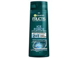 GARNIER FRUCTIS Shampoo Ice Force Pfefferminze 2in1 Haare Kopfhaut