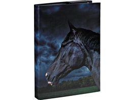 Heftbox A4 Pferde 2019 sortiert