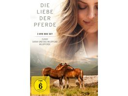 Die Liebe der Pferde 3 DVDs