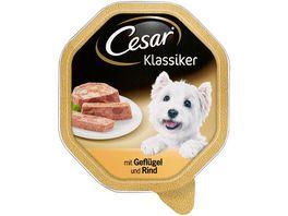 Cesar Hundenassfutter Klassiker mit Gefluegel und Rind