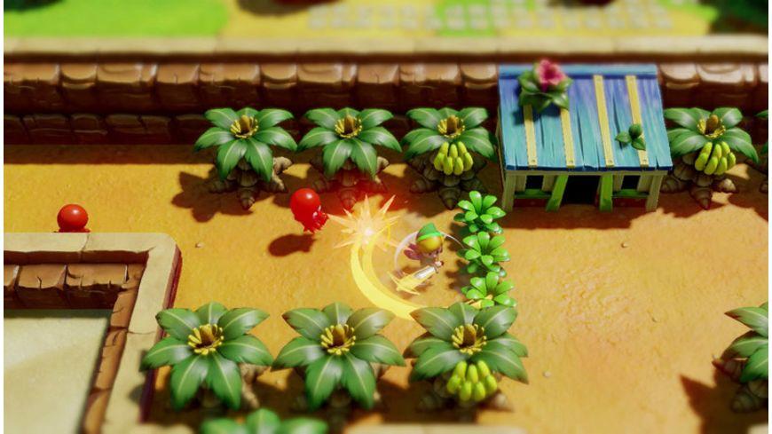 The Legend of Zelda Link s Awakening