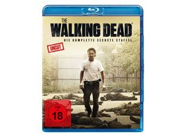 The Walking Dead Staffel 6 Uncut 6 BRs