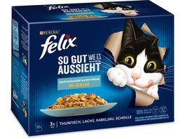 felix Katzennassfutter So gut wie es aussieht in Gelee Geschmacksvielfalt aus dem Wasser 12x85g