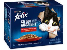 felix Katzennassfutter So gut wie es aussieht in Gelee Geschmacksvielfalt vom Land 12er Pack