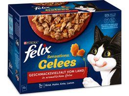felix Katzennassfutter Sensations Gelees Geschmacksvielfalt vom Land 12x85g