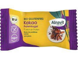 Alnavit Bio Protein Kugel Kakao 24G