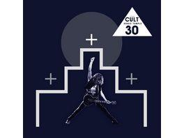 Sonic Temple 30th Anniv Deluxe Box Set Edition
