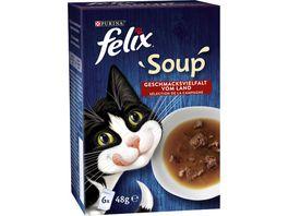 felix Katzennassfutter Soup Geschmacksvielfalt vom Land mit Rind Huhn Lamm 6x48g