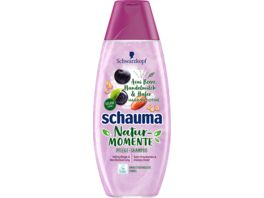 schauma Shampoo Natur Momente Acaibeere Haferflocken