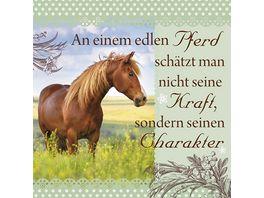 H H Romantisches Geschirrtuch An einem edlen Pferd