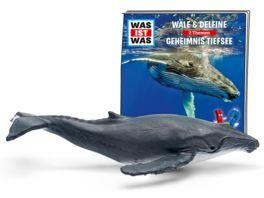 tonies Hoerfigur fuer die Toniebox WAS IST WAS Wale Delfine Geheimnisse Tiefsee