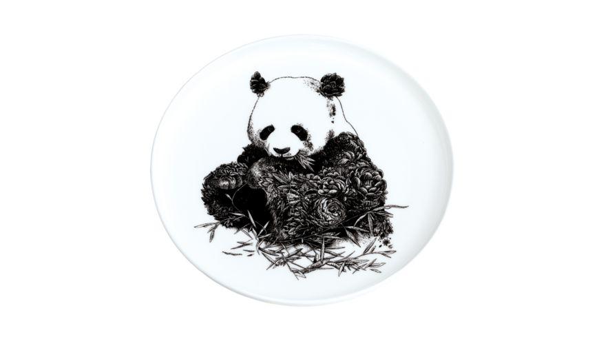 MAXWELL WILLIAMS Teller MARINI FERLAZZO Giant Panda