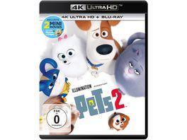 Pets 2 4K Ultra HD Blu ray 2D