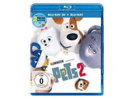 Pets 2 Blu ray 2D