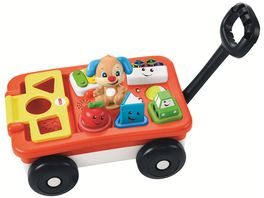 Fisher Price Lernspass Bollerwagen