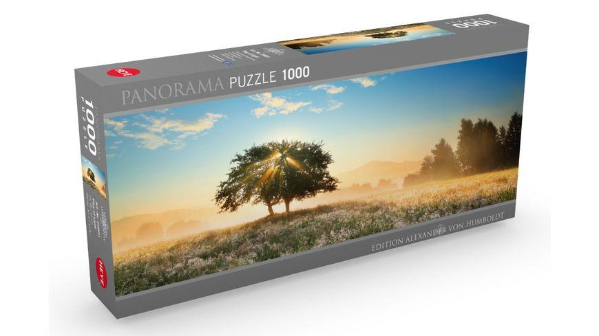 Heye Panoramapuzzle 1000 Teile Alexander von Humboldt Play of Light